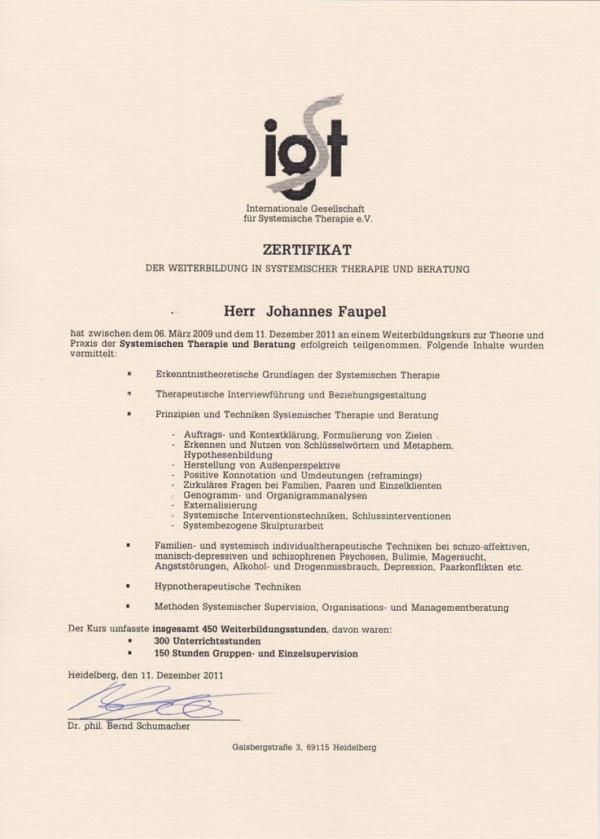 Zertifiziert durch die Internationale Gesellschaft für Systemische Therapie IGST